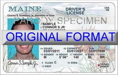 Maine Fake ID Template Small
