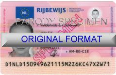 Florida Driver License Format ID Cards Designs Templates Novelty Software Card Hologram id Florida canada