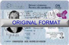 ONTARIO DRIVER LICENSE ORIGINAL FORMAT, DESIGN SPECIFICATIONS, NOVELTY SECURITY CARD PROFILES, IDENTITY, NEW SOFTWARE ID SOFTWARE ONTARIO driver
