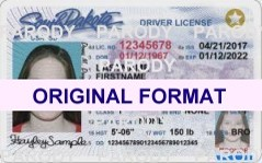 South Dakota Fake Driver License Small