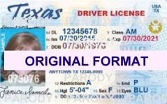 TEXAS DRIVER LICENSE ORIGINAL FORMAT, DESIGN SPECIFICATIONS, NOVELTY SECURITY CARD PROFILES, IDENTITY, NEW SOFTWARE ID SOFTWARE