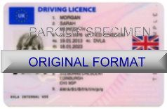 International Driver's Licenses and Fake ID ID Cards