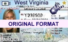 novelty id, novelty id card, driver license novelty west virginia card, new identity software design custom